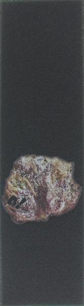 PARADOX SINGLE SHEET PURP NUG 9x33 GRIPTAPE