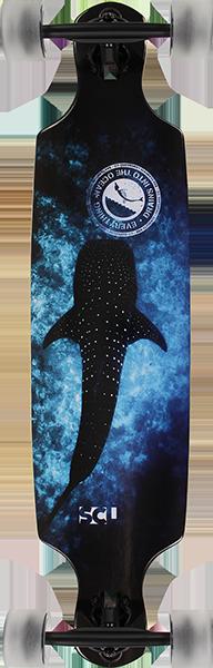 SCSC WHALE SHARK DROP THROUGH COMPLETE-36