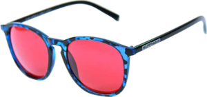 HAPPY HR SUNGLASSES FLAP JACK BLUE TORTOISE