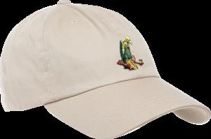 GHETTO CHILD MOJAVE DAD HAT STONE